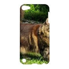 Norwegian Forest Cat Full  Apple iPod Touch 5 Hardshell Case