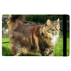 Norwegian Forest Cat Full  Apple iPad 2 Flip Case