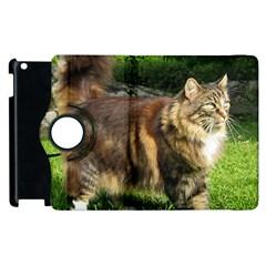 Norwegian Forest Cat Full  Apple iPad 2 Flip 360 Case
