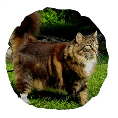 Norwegian Forest Cat Full  Large 18  Premium Round Cushions