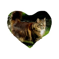 Norwegian Forest Cat Full  Standard 16  Premium Heart Shape Cushions
