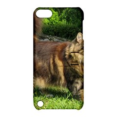 Norwegian Forest Cat Full  Apple iPod Touch 5 Hardshell Case with Stand