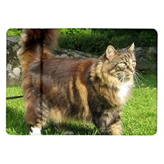 Norwegian Forest Cat Full  Samsung Galaxy Tab 10.1  P7500 Flip Case
