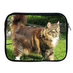 Norwegian Forest Cat Full  Apple iPad 2/3/4 Zipper Cases