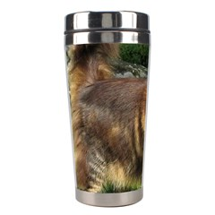 Norwegian Forest Cat Full  Stainless Steel Travel Tumblers