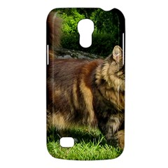 Norwegian Forest Cat Full  Galaxy S4 Mini
