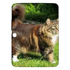 Norwegian Forest Cat Full  Samsung Galaxy Tab 3 (10.1 ) P5200 Hardshell Case
