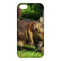 Norwegian Forest Cat Full  Apple iPhone 5C Hardshell Case