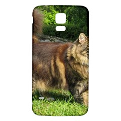 Norwegian Forest Cat Full  Samsung Galaxy S5 Back Case (White)