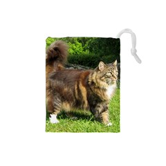 Norwegian Forest Cat Full  Drawstring Pouches (Small)