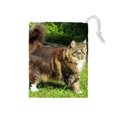 Norwegian Forest Cat Full  Drawstring Pouches (Medium)