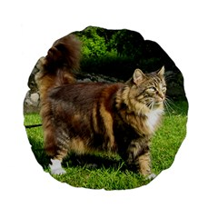 Norwegian Forest Cat Full  Standard 15  Premium Flano Round Cushions