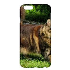 Norwegian Forest Cat Full  Apple iPhone 6 Plus/6S Plus Hardshell Case