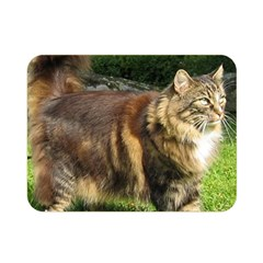 Norwegian Forest Cat Full  Double Sided Flano Blanket (Mini)