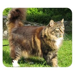 Norwegian Forest Cat Full  Double Sided Flano Blanket (Small)