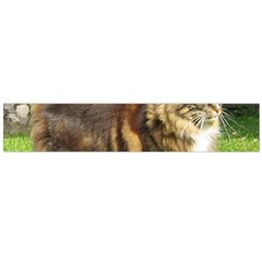 Norwegian Forest Cat Full  Flano Scarf (Large)