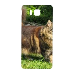 Norwegian Forest Cat Full  Samsung Galaxy Alpha Hardshell Back Case