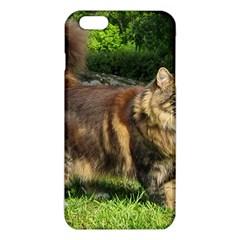 Norwegian Forest Cat Full  iPhone 6 Plus/6S Plus TPU Case