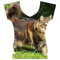 Norwegian Forest Cat Full  Women s V-Neck Cap Sleeve Top