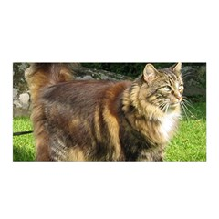 Norwegian Forest Cat Full  Satin Wrap
