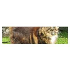 Norwegian Forest Cat Full  Satin Scarf (Oblong)
