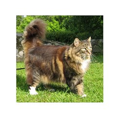 Norwegian Forest Cat Full  Small Satin Scarf (Square)