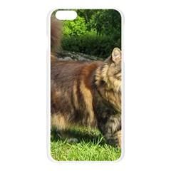 Norwegian Forest Cat Full  Apple Seamless iPhone 6 Plus/6S Plus Case (Transparent)