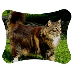 Norwegian Forest Cat Full  Jigsaw Puzzle Photo Stand (Bow)