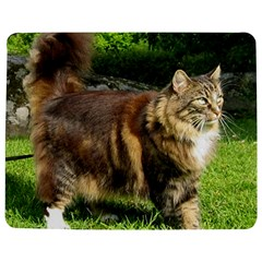 Norwegian Forest Cat Full  Jigsaw Puzzle Photo Stand (Rectangular)