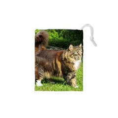 Norwegian Forest Cat Full  Drawstring Pouches (XS)