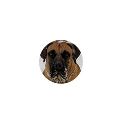 Boerboel  1  Mini Buttons
