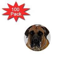 Boerboel  1  Mini Buttons (100 pack)