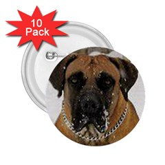 Boerboel  2.25  Buttons (10 pack)