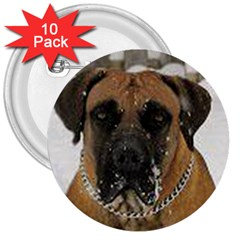 Boerboel  3  Buttons (10 pack)