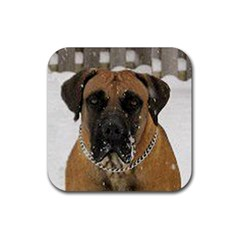 Boerboel  Rubber Square Coaster (4 pack)