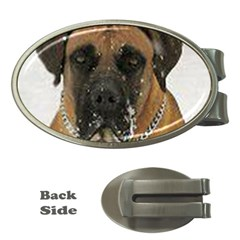 Boerboel  Money Clips (Oval)
