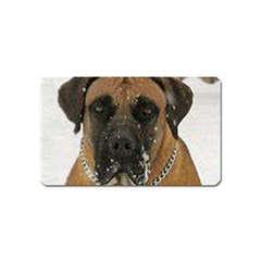 Boerboel  Magnet (Name Card)
