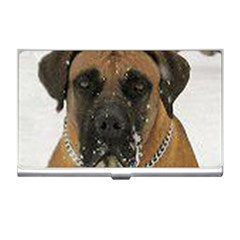 Boerboel  Business Card Holders