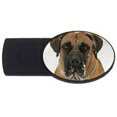 Boerboel  USB Flash Drive Oval (1 GB)