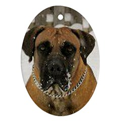 Boerboel  Oval Ornament (Two Sides)
