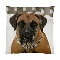 Boerboel  Standard Cushion Case (Two Sides)