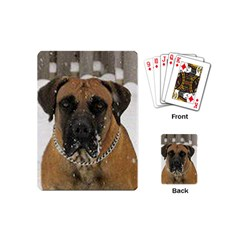 Boerboel  Playing Cards (Mini)