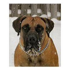 Boerboel  Shower Curtain 60  x 72  (Medium)