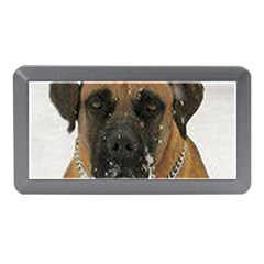 Boerboel  Memory Card Reader (Mini)