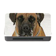Boerboel  Memory Card Reader with CF