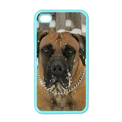 Boerboel  Apple iPhone 4 Case (Color)