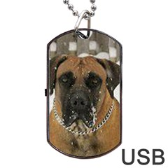 Boerboel  Dog Tag USB Flash (One Side)