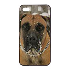 Boerboel  Apple iPhone 4/4s Seamless Case (Black)