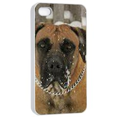 Boerboel  Apple iPhone 4/4s Seamless Case (White)