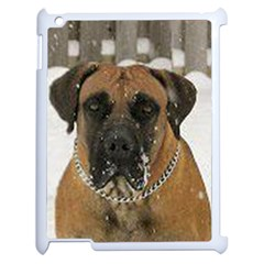 Boerboel  Apple iPad 2 Case (White)